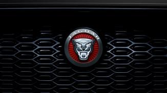 Emblema jaguar iluminado da grande dianteira