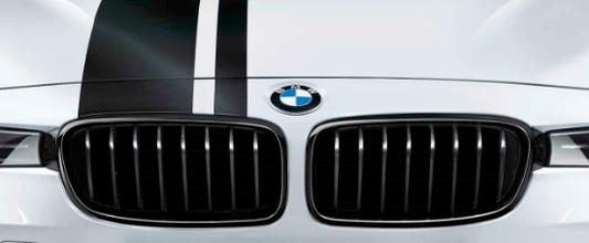 galeria BMW M Performance grade frontal em preto F30 Série 3