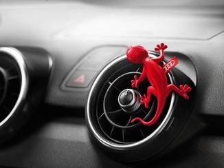 Aromatizador - Gecko Floral