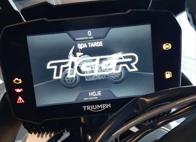 galeria TIGER 900 RALLY