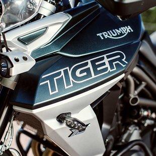 Tiger 800 2020 2020