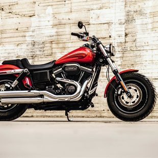 Thumb large comprar fat bob 62324e65bf