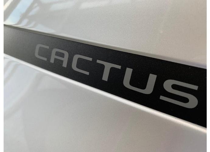 galeria C4 Cactus