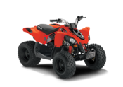Can-Am Offroad DS