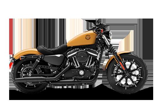 Harley Davidson Iron 883 2019