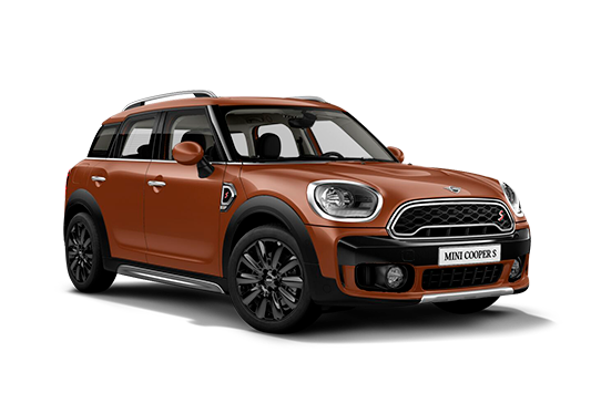 Countryman 2019 Cooper S ALL4
