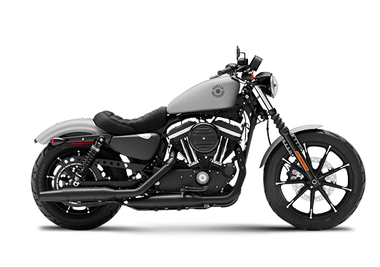 Iron 883 2020 Barracuda Silver Denim
