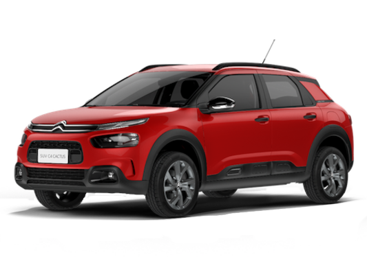 C4 CACTUS 2020 FEEL BUSINESS
